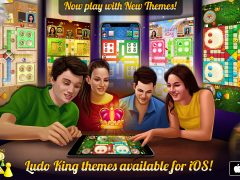 Ludo King Themes